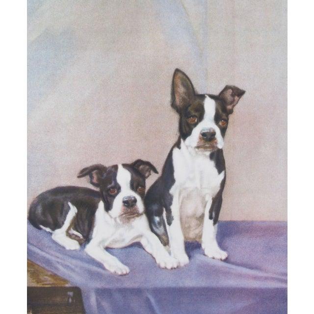 Vintage Diana Thorne Print - Bulldogs - Image 3 of 3