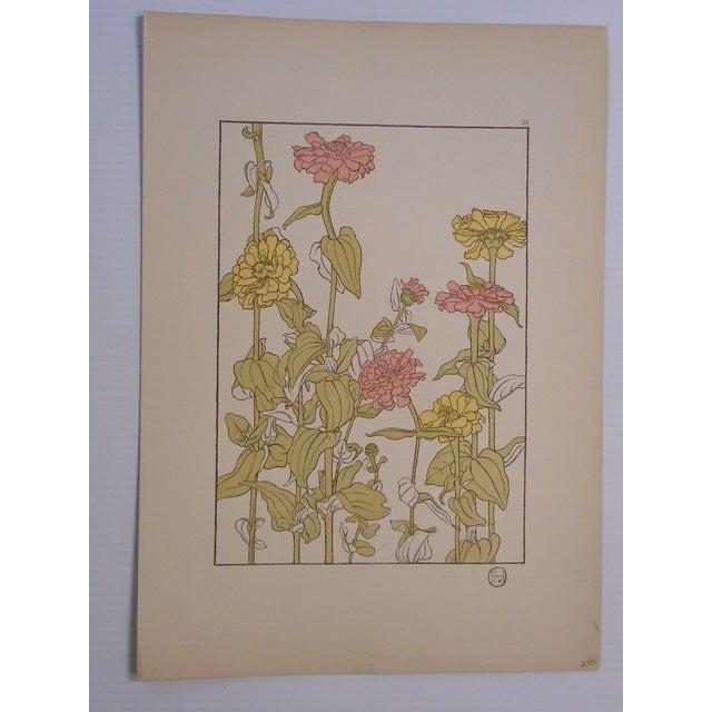 Image of Art Nouveau Botanicals Prints - Pair