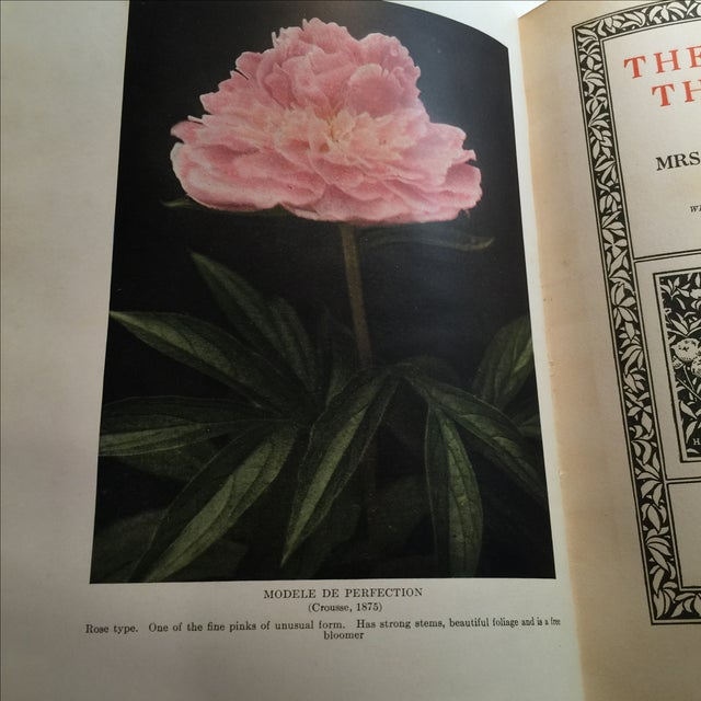"""The Book of the Peony"" by Harding, 1917 - Image 3 of 11"