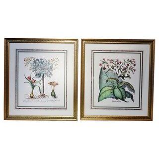 Flora Prints -Pair