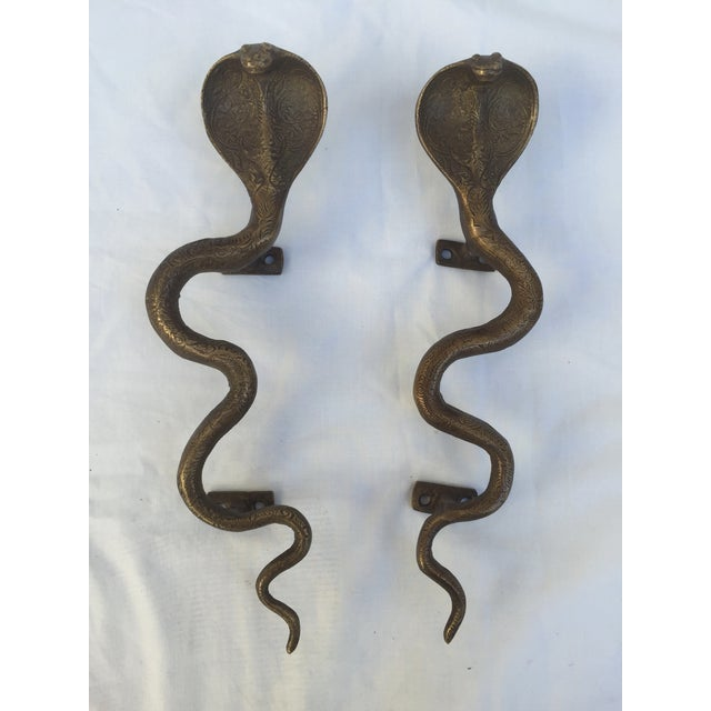 Image of Brass Cobra Door Handles - Pair