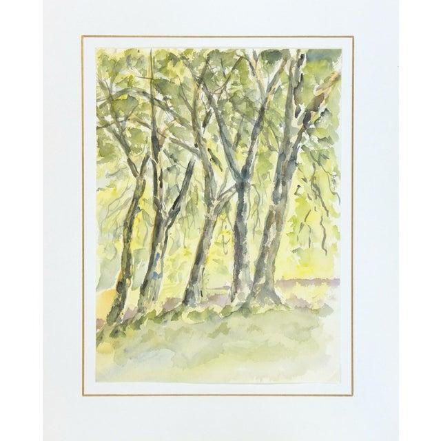 Image of Original Vintage Watercolor Landscape - the Grove