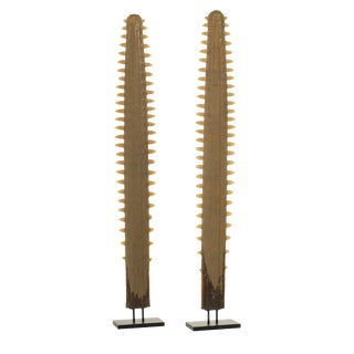 Pair of Sawfish Rostrums / Bills / Blades mounted on custom stands