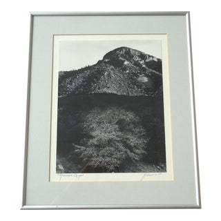 "Framed ""Huachaca Canyon"" Photograph"