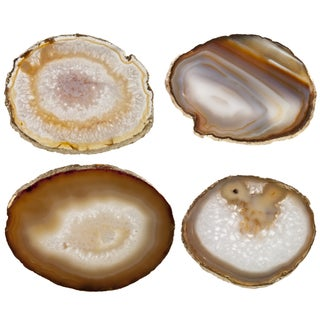 Brown Agate Slice & Gold Rim Coasters - Set of 4