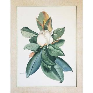 C. 1940 Magnolia Blossom Watercolor