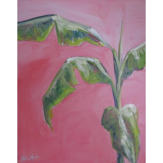 Palm Beach Banana Tree by Alice Houston Miles