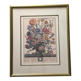 "Rob Furber ""Twelve Months of Flowers - March"" Print"