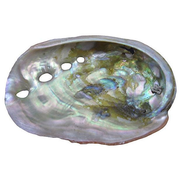 Vintage Mother-Of-Pearl Abalone Shells - Set of 6 - Image 3 of 5