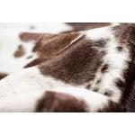 Image of Brown & White Cowhide Rug - 6' x 7'