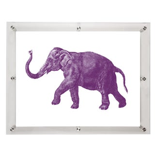 Mitchell Black Home Acrylic Framed Elephant Art Print