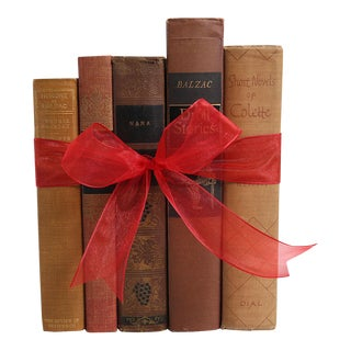 Vintage Book Gift Set: French Classics, S/5
