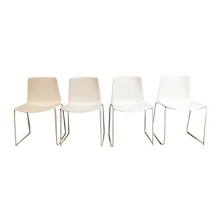 Pedrali #897 Tweet Chairs - Set of 4