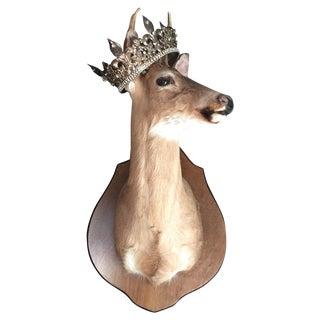 Large Mounted Deer Head Stag