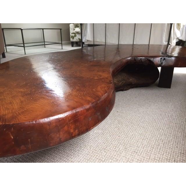 Mid Century Redwood Burl Coffee Table