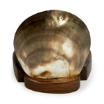 Image of Vintage 1960s Shell & Walnut Hinged Container