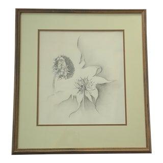 Julie Schaefer Sunflower Study Drawing