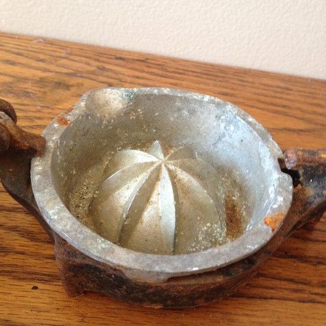 Image of Antique Lemon Squeezer Citrus Juicer