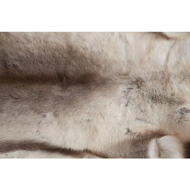 Luxurious Reindeer Fur Throw - Image 3 of 4