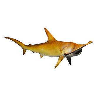 1970's Fiberglass Hammerhead Shark