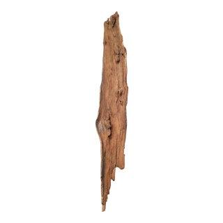 Natural Drift Wood Piece