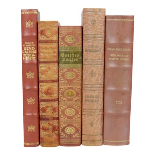 Scandinavian Leather Bound Books - S/5