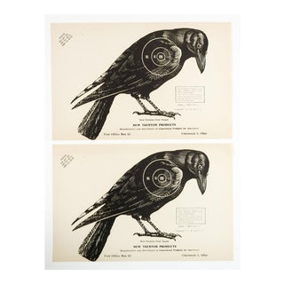 Crow Raven Paper Targets - A Pair