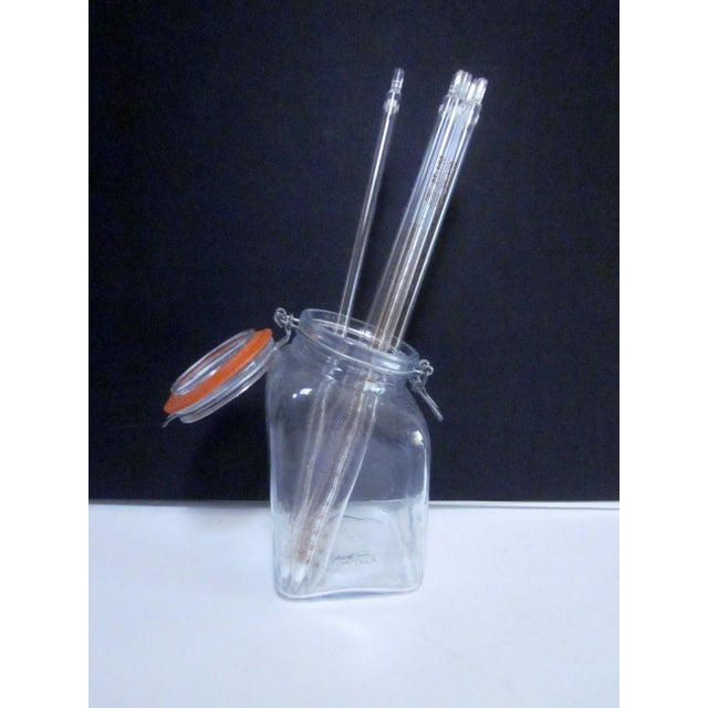 Image of Italian Glass Jar Filled With Pyrex Lab Test Tubes