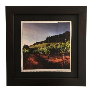 Sunrise in Mountain Vineyard Multimedia Photograph