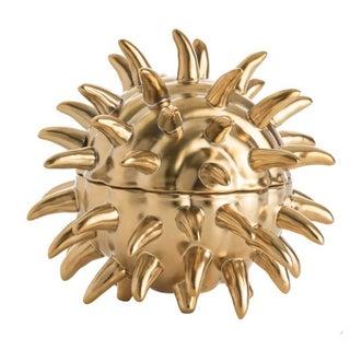 Modern Gold Urchin Box