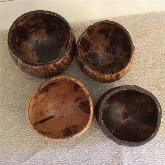 Coconut Cocktail Cups - Set of 4 - Image 4 of 6