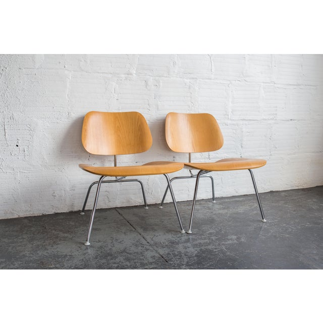 Eames Molded Plywood LCM Chair - Image 4 of 6
