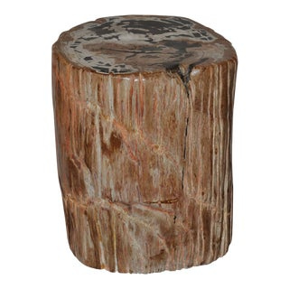 Ancient Petrified Wood Side Table