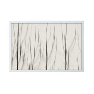 "Alex Axon ""Mystic Woods"" Framed Photo Print"