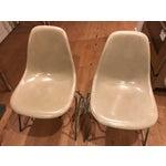 Image of Herman Miller Plastic Chair - A Pair