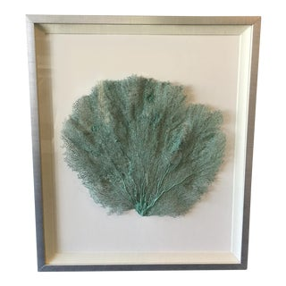 Framed Teal Bahama Fan