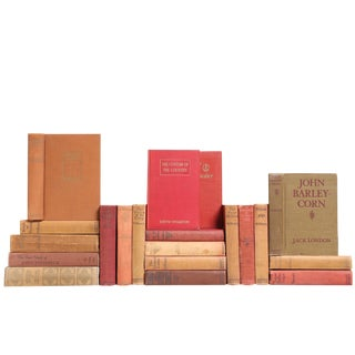 Clay-Toned American Classic Books - Set of 20