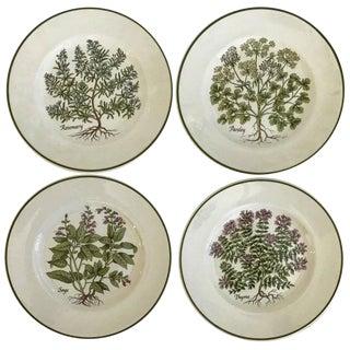 """Tiffany & Co. """"Herbs"""" Plates - Set of 4"""