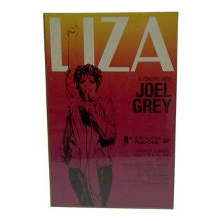 1981 Michelob Concert Series Liza at Popular Creek