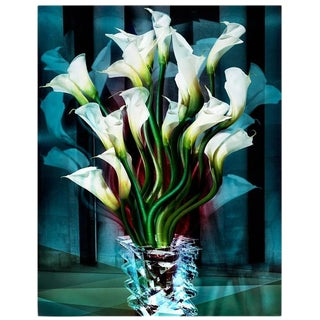 Angelika Buettner, Calla Lilies, 2005 - (limited edition)