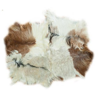 "Turkish Angora Skin Rug - 4'3"" x 5'5"""