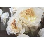 Image of Medium Framed Flower Photograph