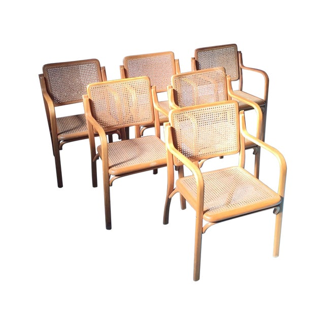 Danish Modern Bentwood Cane Chairs - Set of 6 - Image 1 of 11