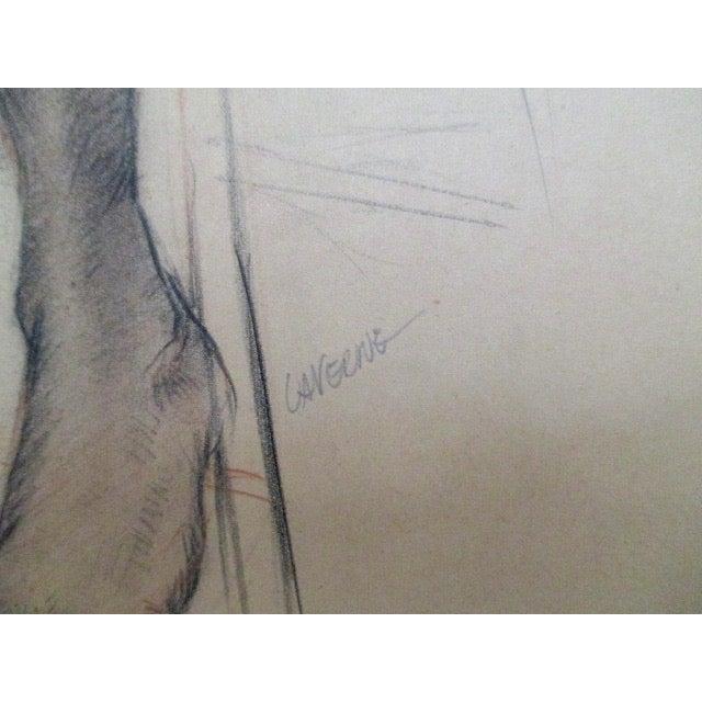 Vintage naked male-4479