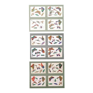 Three China Trade Picture Groupings Miniature Paintings of Butterflies