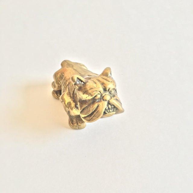 Image of Brass Mini Bulldog