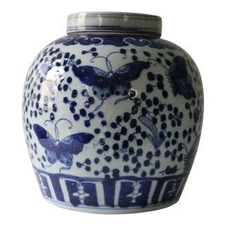 Blue & White Butterfly Ginger Jar
