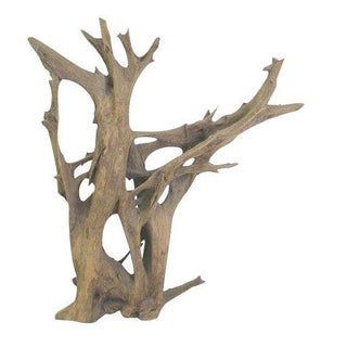 Drift Wood Sculpture