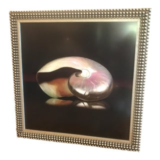 "Val Andre ""Nautilus Collection II"" Giclee"