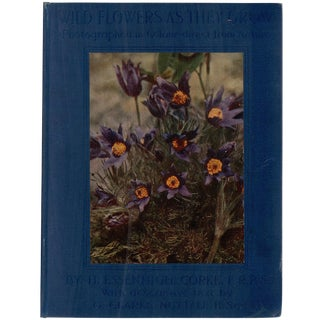 """Wild Flowers as They Grow"" 1914 Book"